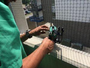 bird-netting-install