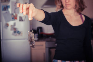Woman holding dead mouse in need for dead animal removal