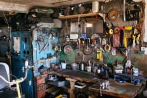 Declutter garage to reduce need for animal removal