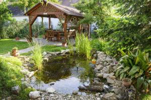 Wildlife Control Helps Ponds