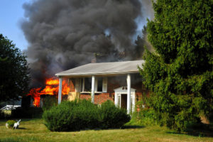 Squirrel removal may have prevented this house fire