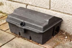 Mouse trap used for animal control