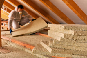 Man with wildlife control services replacing attic insulation