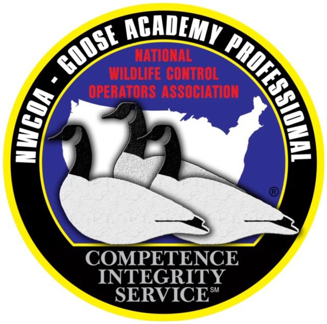 Goose Academy