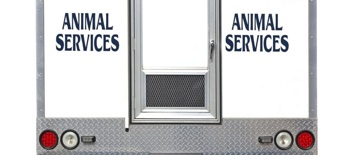 Back of a white wildlife control service truck